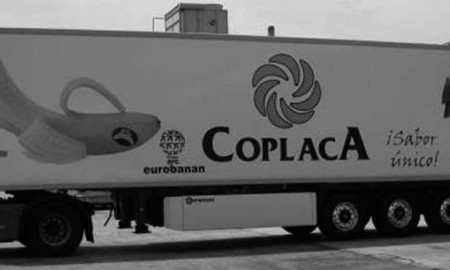 EL ENEMIGO DEL PLÁTANO CANARIO TOCA EN LA PUERTA DE EUROBANAN