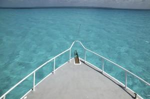 Navegando por aguas claras