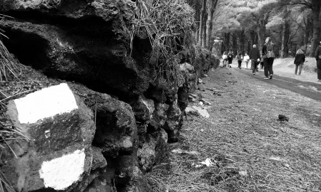 Senderismo-El-Hierro-foto-Cristina-Ferro-ConvertImage