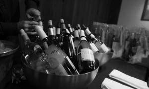 vinosblancos-proyectoenomac2
