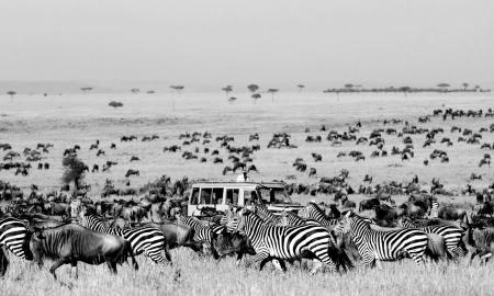 safariafrica