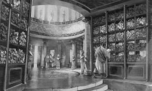 alejandria_biblioteca-convertimage