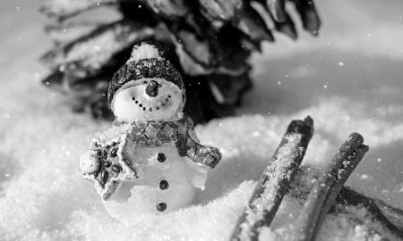 snow-man-1882635_960_720