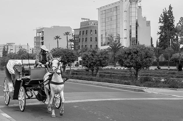 Coche de caballos en las avenidas de La Ville Nouvelle