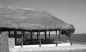 Eco-campamento_Faoye