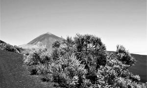 Pico_El_Teide_-_Tenerife,_Islas_Canarias