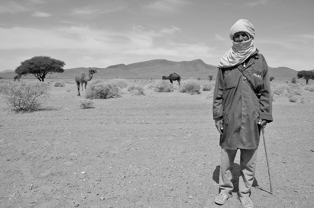 Pastor de camellos en los áridos paisajes del sur marroquí