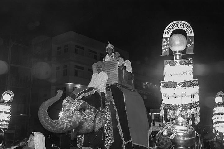 Elefante en medio de Jaipur