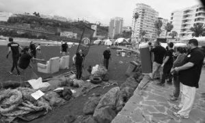Loro Parque Fundación celebra el Día de los Océanos