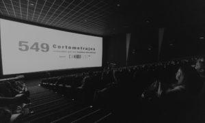 Cinedfest recibe la insignia de plata de Youtube