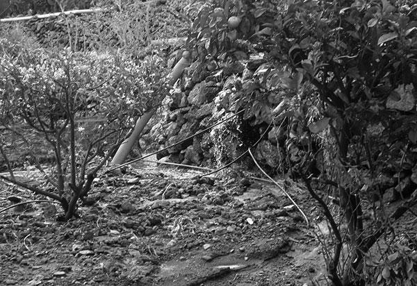 Foto con impacto ocasionado por las fuertes precipitaciones de enero-febrero de 2010 en finca agrícola de Tenerife. / CANARIAS3PUNTOCERO