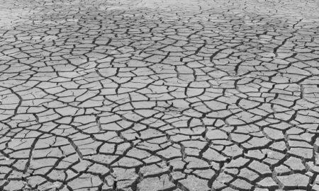 África en la cumbre del clima