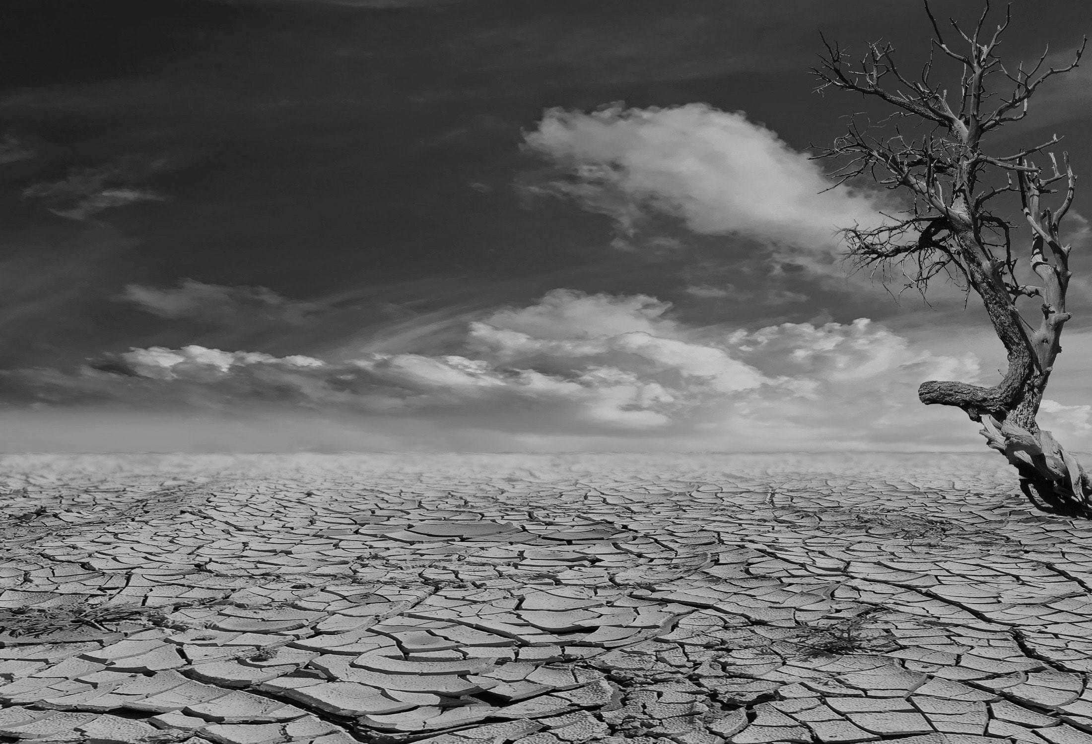 Casa África centra el tema de su Premio de Ensayo en el cambio climático